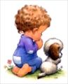 安可's avatar
