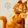 波波虎's avatar