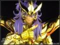 黄金圣斗士's avatar
