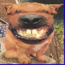 Boby15000's avatar