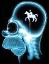 cavallino's avatar