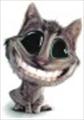 davinchi's avatar