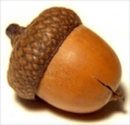 donghaima's avatar