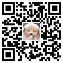 feiyun0112's avatar