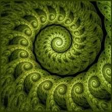 fractal_c's avatar