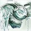 Halceyon's avatar