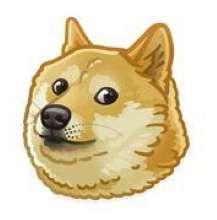Hedy.Kim's avatar
