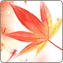 hili210's avatar