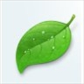 Int-L's avatar