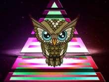 INWO's avatar