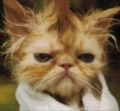 Jimguy's avatar