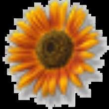 lanax's avatar