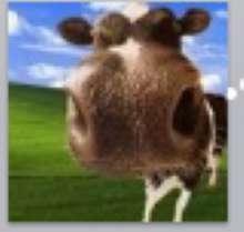 MaliStane's avatar
