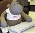 MQCA's avatar