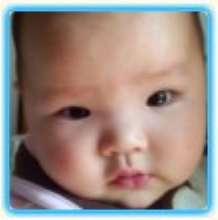 Nemo.Tan's avatar