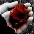 NineTyNine_LiPei's avatar