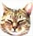 RuWel's avatar