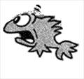 SaltFish's avatar