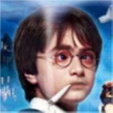 sddim's avatar