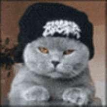 sg6336's avatar
