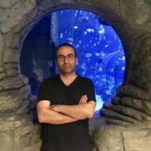 Shahram.Mohebbi's avatar