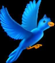 SimpleSQL's avatar