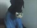 soquita's avatar