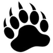 stnmr's avatar