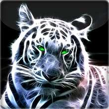 tom982's avatar