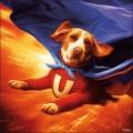 Underdog_9's avatar