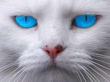 ValeryM's avatar
