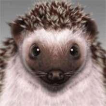 VKsystem's avatar