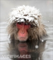 wlo413's avatar