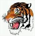 Wood123456's avatar