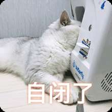 xinyongyilan's avatar